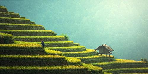 Un couple a pris la décision de vivre en Thaïlande